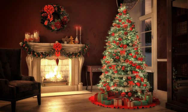 Best Time To Buy A Christmas Tree