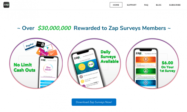 Zap Surveys Review – Can You Make Money With Their Surveys?